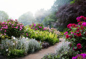 Art flowers in the morning in an English park — Foto de Stock