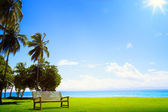 Art Desert tropical island with palm tree and chaise lounge — Stock Photo