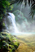 Art waterfall in a dense tropical rainforest — Stock Photo