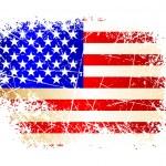 USA flag — Stock Vector #3570070