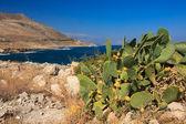 Landschaft auf kreta — Stockfoto