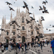 Stock Photo: Milan Cathedral