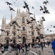 Milan Cathedral — Stock Photo #36041175