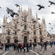 Milan Cathedral — Stock Photo