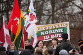 Thousand people gather in nationalist rally in Vilnius — Stock fotografie