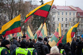 Thousand people gather in nationalist rally in Vilnius — 图库照片