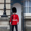 Stock Photo: Changing of Guards