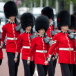 Changing of the Guards — Stock Photo