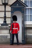 Changing of the Guards — Foto Stock