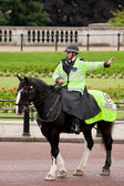 Policeman on the horse — Stock Photo