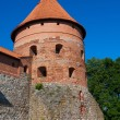 Trakai Island Castle — Stock Photo #48131961