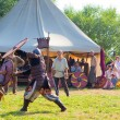 Medieval fights — Stock Photo #48362531
