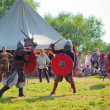 Medieval fights — Stock Photo #48362533