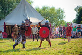 Medieval fights — Stock Photo