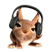 Rabbit in the headphones — Stock Photo