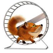 Fox in the wheel — Stock Photo