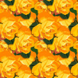 Orange Honey roses wallpaper — Stock Photo
