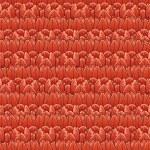Tulip wallpaper — Stock Photo