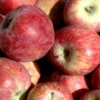 No Name Apples — Stock Photo