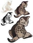 Chaton tigré avec des variations — Vecteur