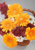 Bunch of the flowers in basket 11 — Stock Photo