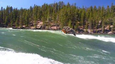 Yellowstone River Rapids — Стоковое видео