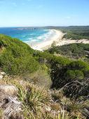 Booti Booti National Park - Australia — Стоковое фото