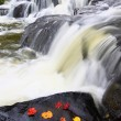 Bond Falls in northern Michigan - Stock Photo