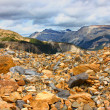 Yoho National Park Glacial Landscape - Stock Photo