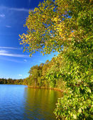 Sweeney Lake Northwoods Wisconsin — Stock Photo