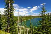 Duck Lake Yellowstone National Park — Stock Photo