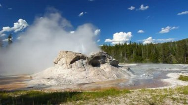 Grotto Geyser Yellowstone National Park — Stock Video