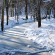 Midwest Winter Scenery — Stock Photo