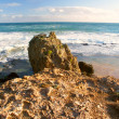Coastline of VictoriAustralia — Stock Photo #17448881