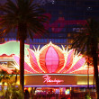 Stock Photo: Flamingo Las Vegas