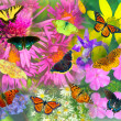 Stock Photo: Butterfly and Flower Collage