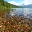 Kintla Lake - Glacier National Park — Stock Video