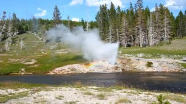 Riverside Geyser of Yellowstone — Stock Video