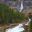 Twin Falls Yoho National Park — Stock Video #24195181