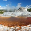 Castle Geyser of Yellowstone — Stock Video