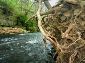 Apple River Canyon State Park Illinois — Stock Photo