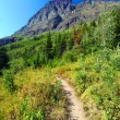 Many Glacier Hiking Trail Montana — Stock Photo
