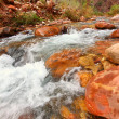 Bright Angel Creek Grand Canyon — Foto Stock