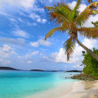 Stock Photo: Saint John US Virgin Islands