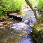 ������, ������: Skillet Creek Cascades in Wisconsin