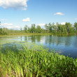 Stock Photo: Little Bearskin Lake Wisconsin