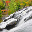 Bond Falls Scenic Area — Foto Stock