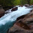 Stock Video: Avalanche Creek in Montana
