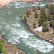 Stock Video: Yellowstone National Park Rapids