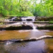 Skillet Creek Cascades in Wisconsin — Stock Photo